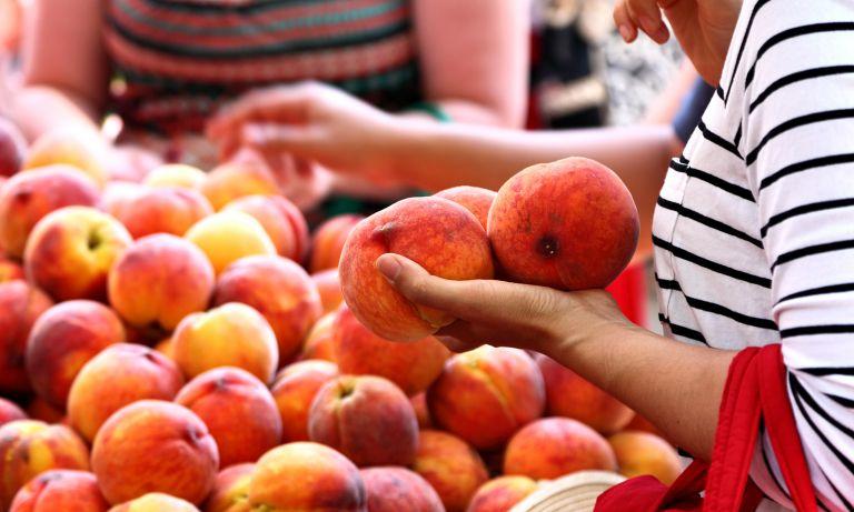 Organic Food Coupon Codes